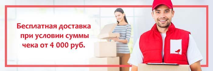 Бесплатная доставка в Москве